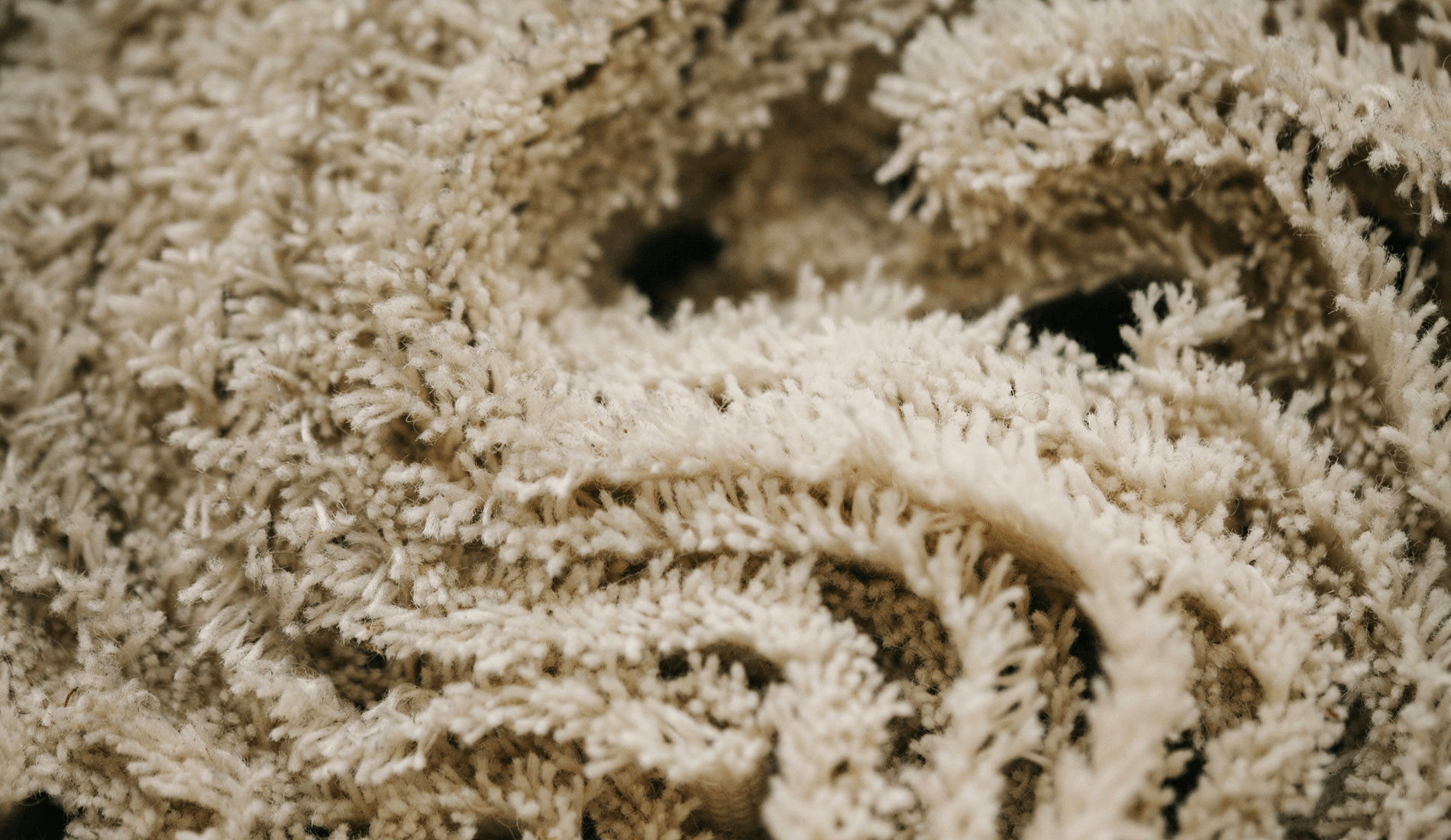 Close up of Sustainable Wool Carpet