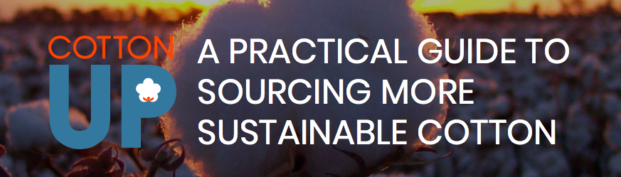 A Practical Guide To Sourcing More Sustainable Cotton